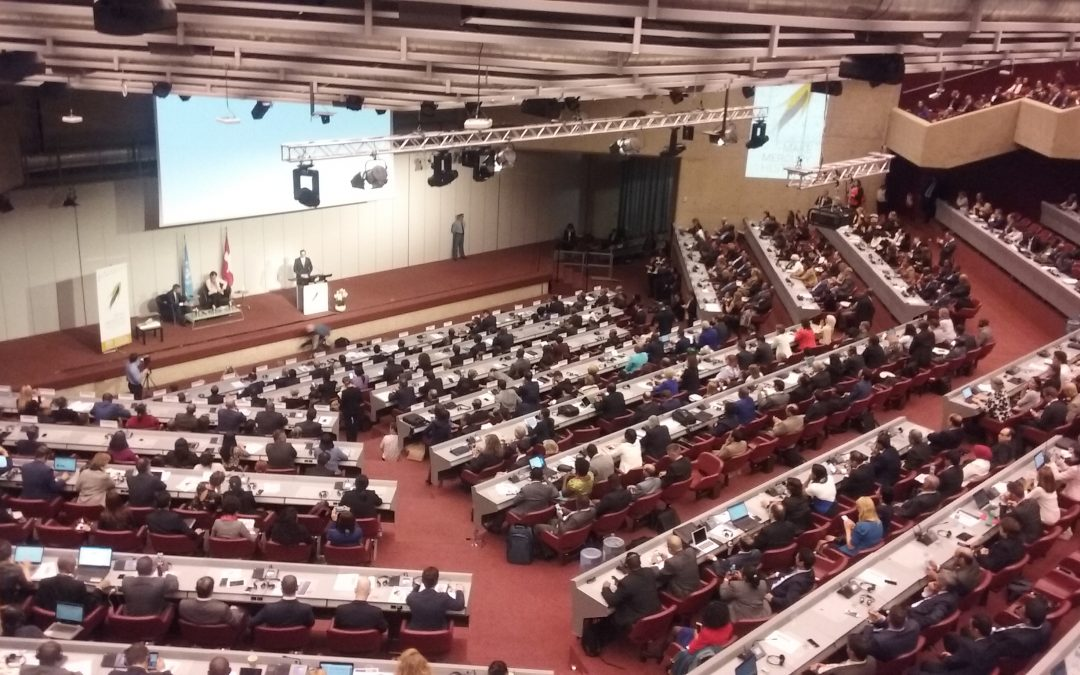 HWE present at the COP1 of the Minamata Convention