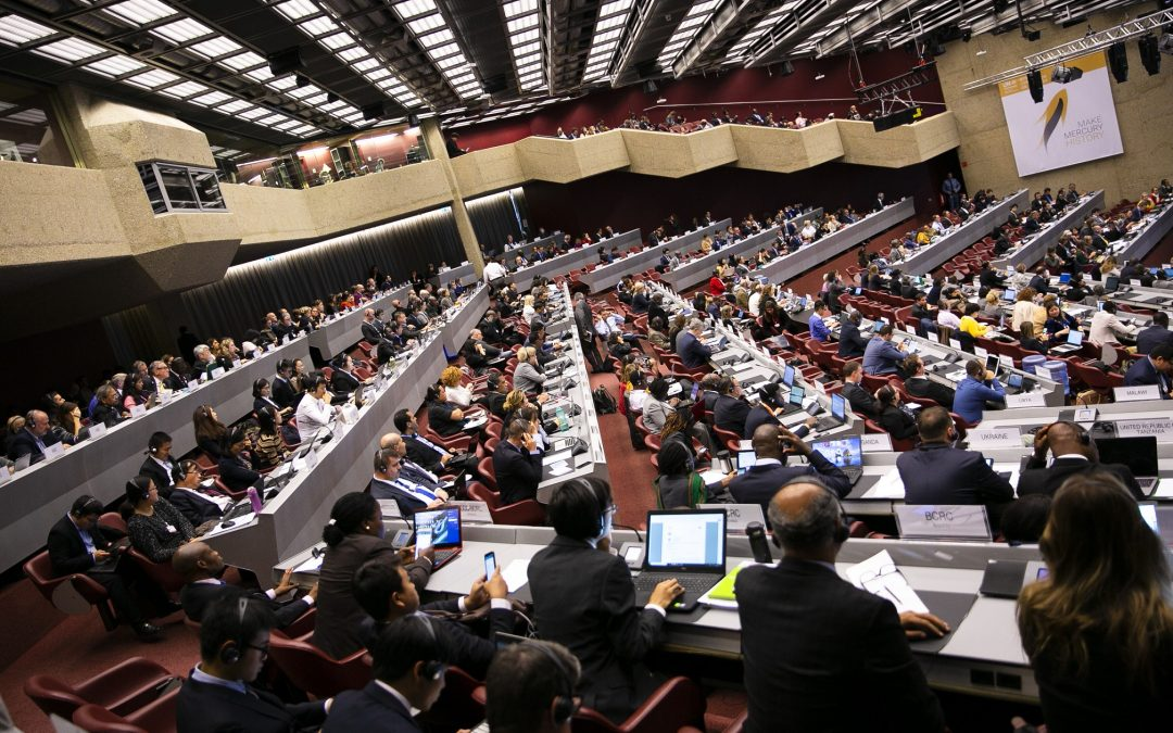 HWE present at the COP2 of the Minamata Convention